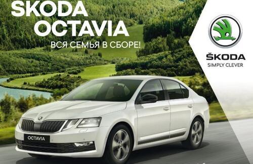 ŠKODA OCTAVIA: яркий дизайн и прогрессивные опции