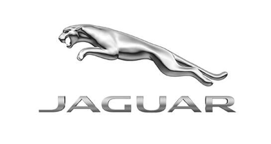 АВТОDOM Jaguar, Москва, 85 км МКАД (внешняя сторона), ТПЗ Алтуфьево, вл. 5, строение 2